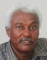 إسماعيل حسن