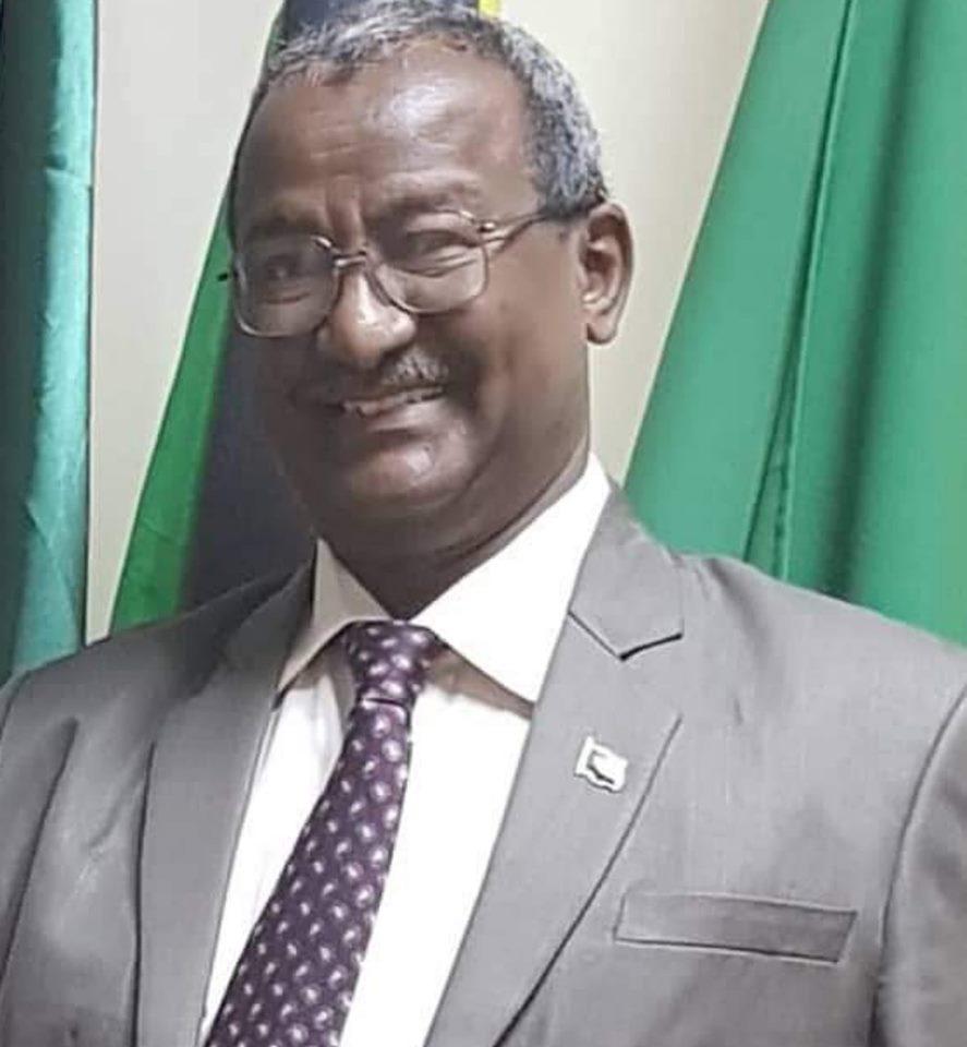 سفير السودان بالكنجو : مهمة الخرطوم في الكنجو ليست سهلة