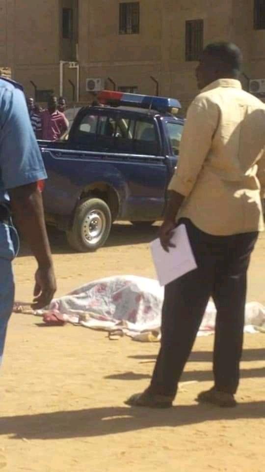 عاجل ..وبالصورة..رجل يذبح امرأة في وضح النهار بالنخيل