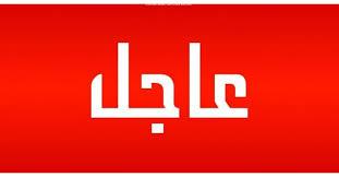 """الحكومة تنسحب من التفاوض مع حركة الحلو اعتراضا على """"الإساءة"""""""