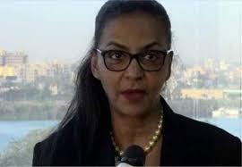 احسان محمود تقدم مقترحا لوزيرة المالية