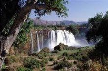 العثور على 70 متسللاً أثيوبياً من بينهم 50 فتاة في حالة خطيرة داخل غابة بشرق النيل!!!