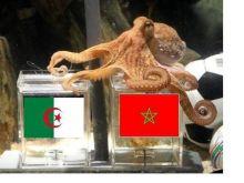 """المغرب يبحث عن مقعد بنهائيات غينيا والجابون عندما يستضيف تنزانيا اليوم ..او لجزائر تسعى الى """"فتح صفحة جديدة"""" في لقاء افريقيا الوسطى!!!"""