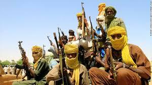 حركة مناوي تتهم الحكومة بجلب عناصر إرهابية الي شمال دارفور
