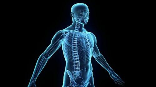 معلومات مهمة عن جسم الإنسان ..تعرف عليها