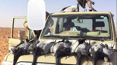 تدوين بلاغات ضد سوريين بسبب الصيد الجائر