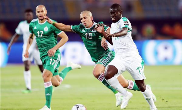 الجزائر والسنغال في اشرس نزال لخطب ود الاميرة السمراء